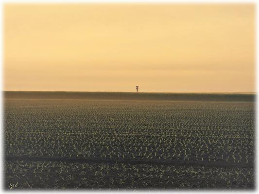 Das einsame Schild ... ach, wo ist eigentlich die Windmühle (siehe oben re.)?