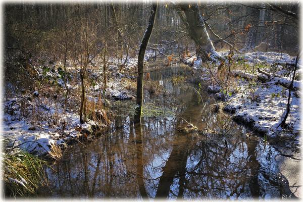 Verträumte Wasserwege