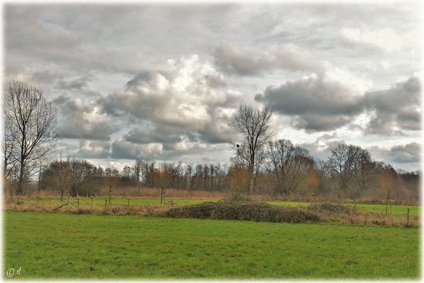 Der freie Blick auf einen in Grau getauchten Landstrich