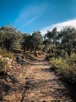 Wanderung von Kala Nera nach Milies