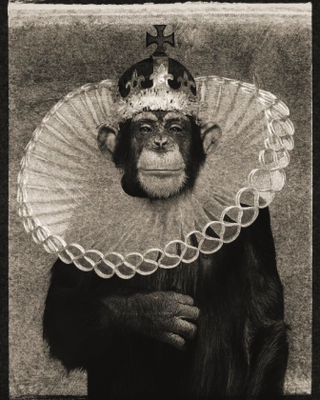 ALBERT WATSON, King Casey, Archivpigmentdruck, 142x107cm