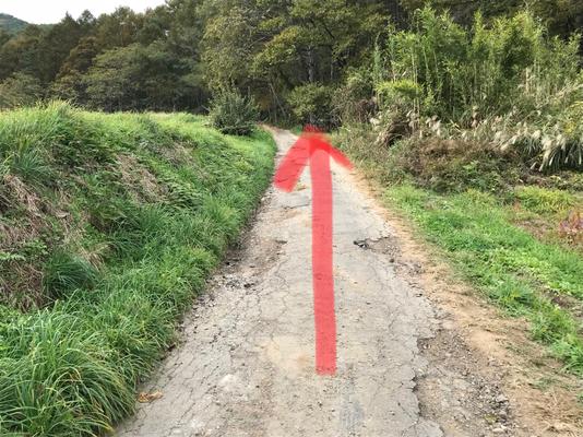 Please walk straight. (登山道まではあと少し)