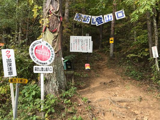 Let's start hiking from here! Enjoy!! (さぁて、ここからハイキングスタートです!)