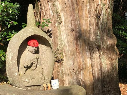 松山市・四国霊場第46番札所 浄瑠璃寺写真画像