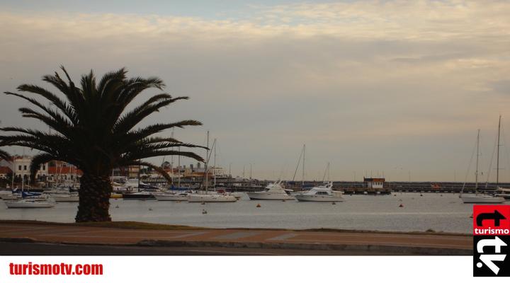 Muelle Punta Del Este