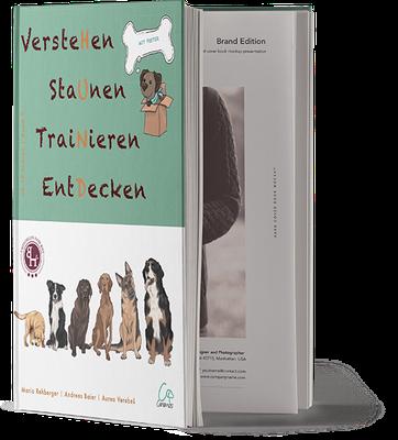 VersteHen, StaUnen, TraiNieren, EntDecken - Band 3 (ab 12 Jahren) - Canimos Verlag