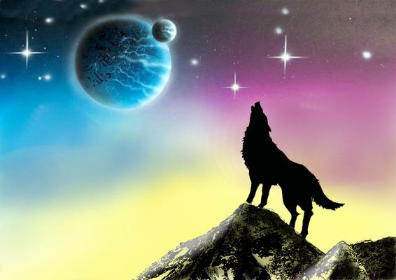 Wolf Weltall Schnupperkurs