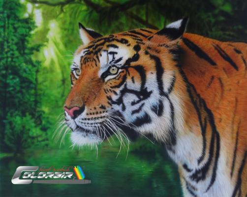 Tiger Airbrushportrait