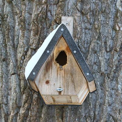 """Meisenkasten aus Holz nachdem ihn der Buntspecht """"bearbeitet"""" hat"""