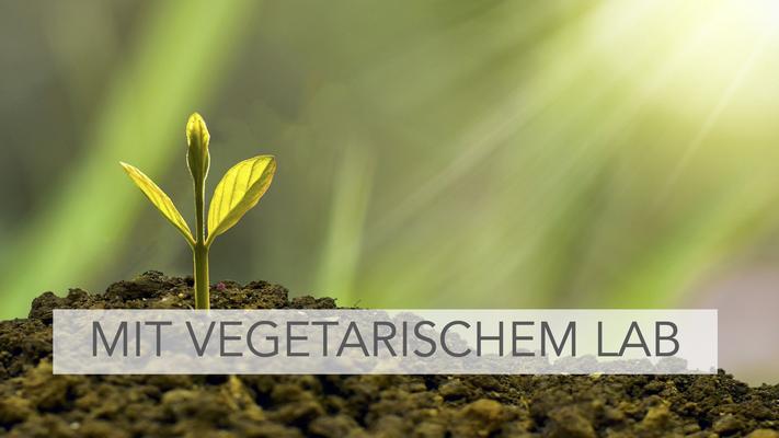 Mit vegetarischem Lab