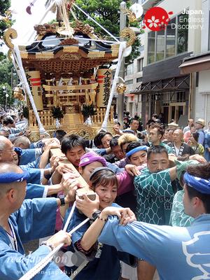 今泉神輿保存会」2016年 横浜開港祭 みこしコラボレーション「_YH16_016