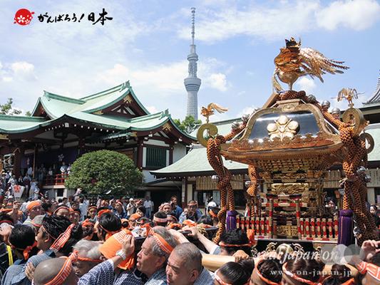 亀戸天神社例大祭:十六番〈両国小泉会〉2014.08.24  Ⓒreal Japan'on!:ktj14-031