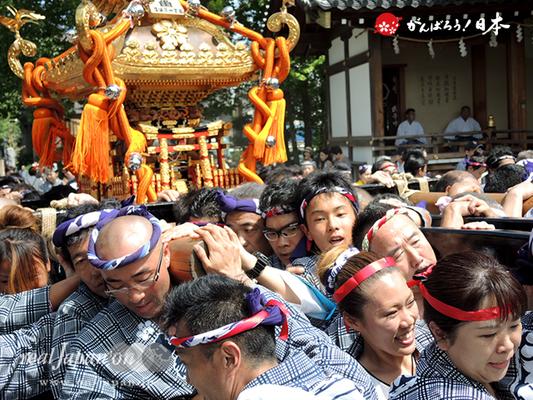 亀戸天神社例大祭:二十一番〈江東橋一丁目〉2014.08.24  Ⓒreal Japan'on!:ktj14-041