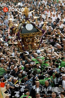 〈下谷神社大祭〉本社神輿渡御 2016.05.08 ©real Japan 'on! (sty16-024)