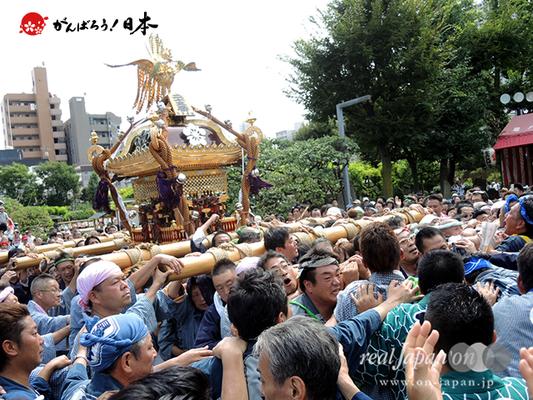 亀戸天神社例大祭:二十五番〈江東橋四丁目〉2014.08.24  Ⓒreal Japan'on!:ktj14-050