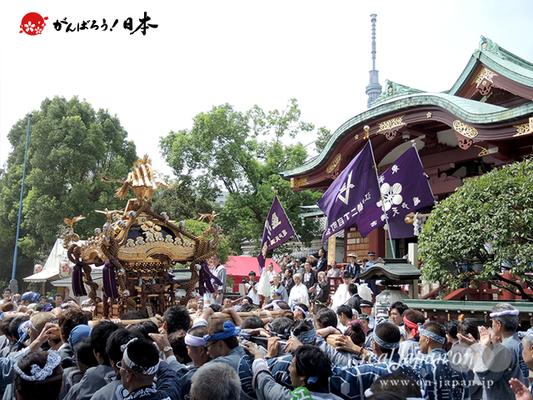 亀戸天神社例大祭:二十三番〈江東橋二丁目〉2014.08.24  Ⓒreal Japan'on!:ktj14-047