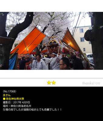 圭さん:弥生神社例大祭, 2017年4月9日