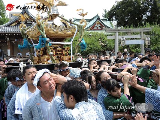亀戸天神社例大祭:十二番〈緑四天神講〉2014.08.24  Ⓒreal Japan'on!:ktj14-023