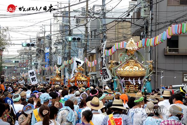 〈2014年 羽田まつり・各町神輿連合渡御〉