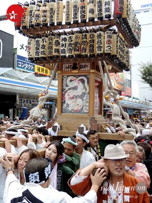 第40回よこすかみこしパレード 2016年10月16日【42. 横須賀神輿連合】YMP16_097