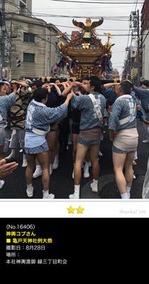 神輿コブさん:亀戸天神社例大祭, 本社神輿渡御 緑三丁目町会, 2016年8月28日