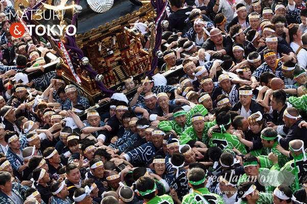 〈下谷神社大祭〉本社神輿渡御 2016.05.08 ©real Japan 'on! (sty16-025)