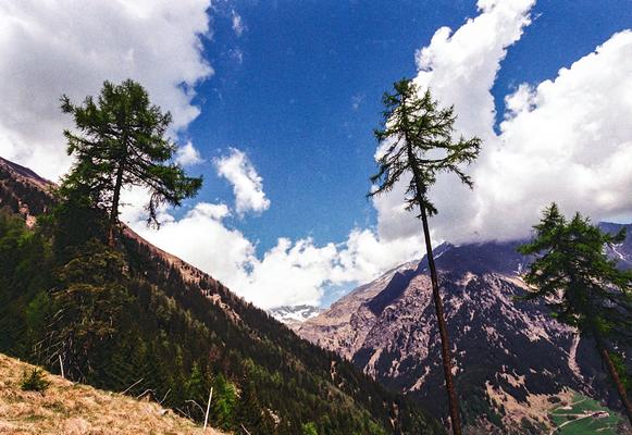 Berge Nikon F80