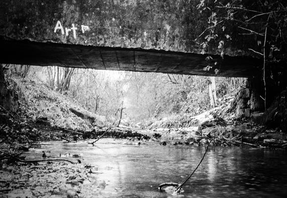 Brücke, Nikon F80