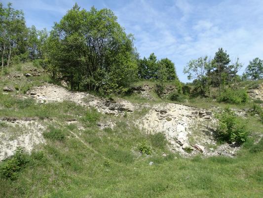 Entbuschter Steinbruchbereich im Westteil mit Schutthalden