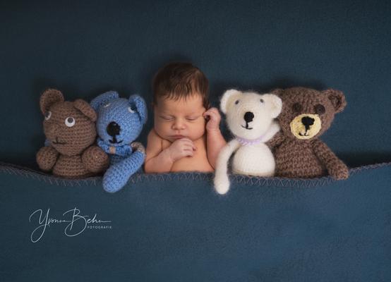 Newborn Teddy