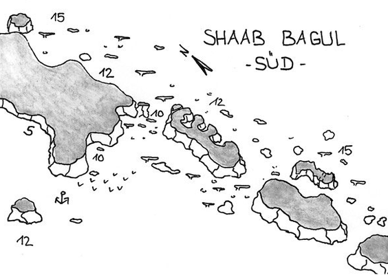 Shab Bagul, Cannon Reef, Hafennähe, Delphine, Safaga