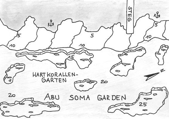 Abu Soma Garden, Korallengarten, viele Riesenmuränen
