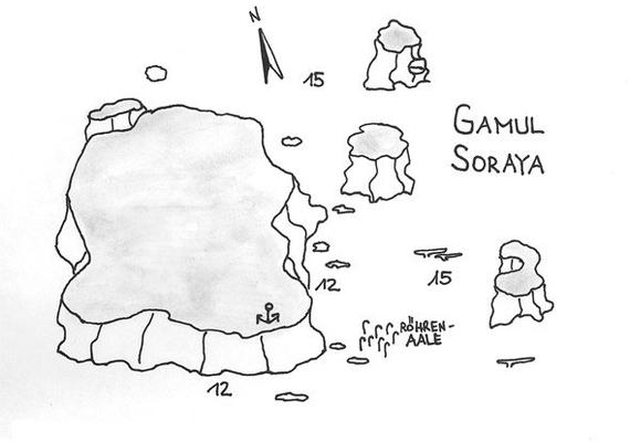 Gamul Soraya, Lieblingsplatz des Teams, große Fischschwärme, oft Delphine, nah am Drop Off, Großfische,Safaga