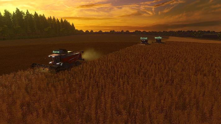 Nach einem Umtausch zum Vorzugspreis beim örtlichen Landmaschinenhändler machen sich die neuen MF Drescher direkt ans nächste Feld.