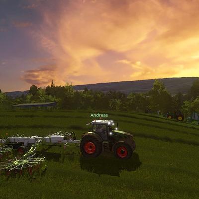 Gelegentlich wird dem Milchvieh auch frisches Gras zugefüttert.