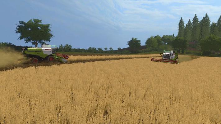 Noch ganz zu Anfang: Zwei Lexion 740 schneiden durch das gelbe Getreidemeer.
