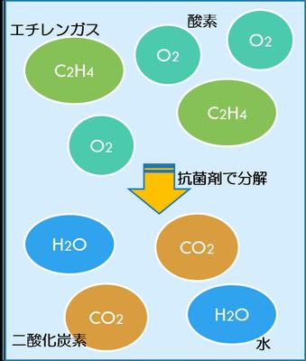 『e:フレッシュ』がエチレンガスを、二酸化炭素と水に分解する仕組み。