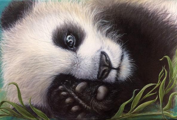 Panda Original Tierporträt