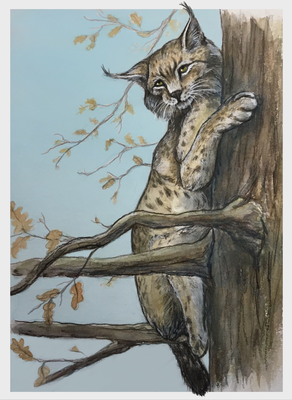 Luchs im Baum Tier Wildtier Illustration