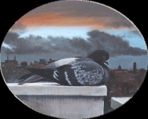 Mehrzad Najand - le pigeon parisien - acrylique sur toile - 23x30cm