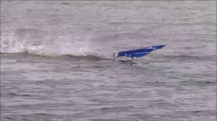 über die Wellen springt es perfekt hinweg