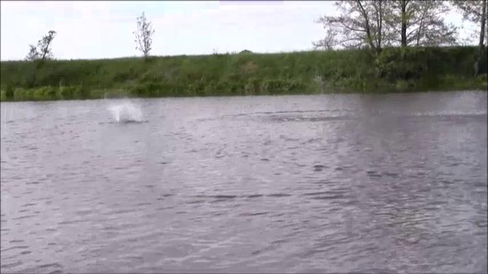 und landet richtig herum wieder im Wasser