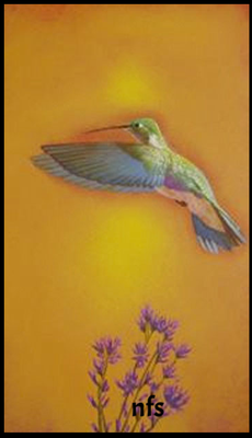 The Green Humming Bird/ gift