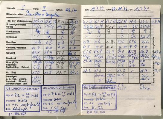 Pränatale Dokumente von Michael Kuhlmey