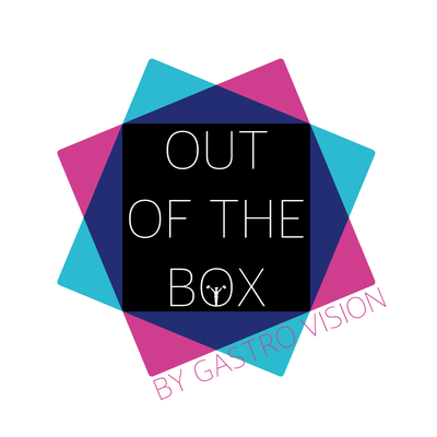 Gastro Vision - Out of the Box