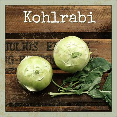 Kohlrabi Anbau