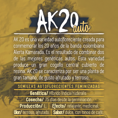 semillas cannabis alerta kamarada ak20