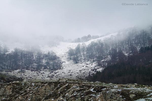 l'inverno - Semprevisa