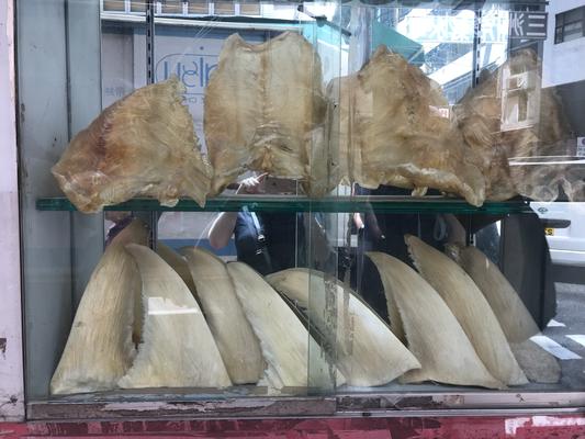 Haifischflossen und weitere undefinierbare Waren