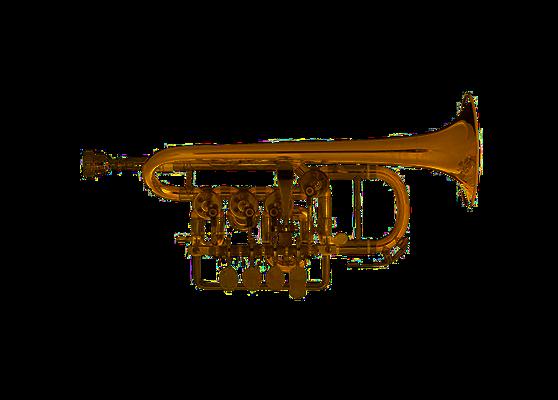 Piccolo-Trompete B/A Scherzer 8111